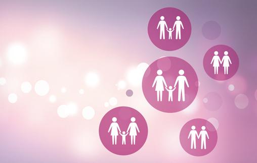 La práctica profesional en Derecho de Familia