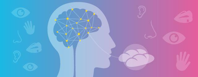 PanCoe de mente: Comunicación + ciencia + gastronomía