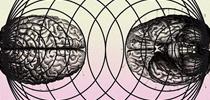 Modelos mentales: Generando nuevas formas de acción