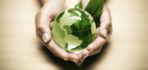 Conferencia: Problemas actuales del Derecho Penal del medio ambiente
