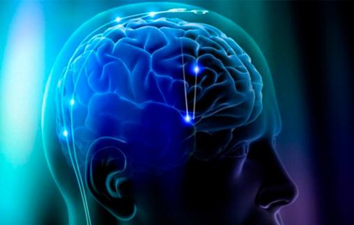 Jornada de Neuropsicología de la Universidad de Palermo