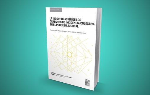 La incorporación de los derechos de incidencia colectiva en el proceso judicial, nuevo libro del Profesor Marcelo López Alfonsín
