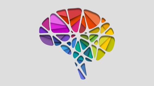 Workshop: Aplicaciones de la Neurociencia Cognitiva al Marketing. Avances y mitos