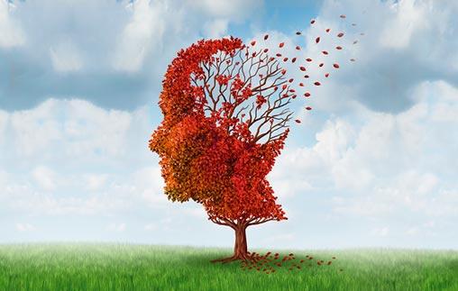 Charla abierta: Día Mundial del Alzheimer