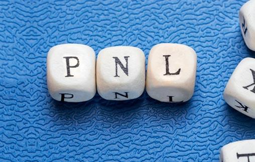 Taller: Programación Neurolingüística (PNL)