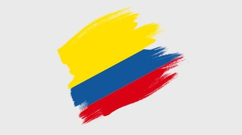 Amicus curiae ante la Corte Constitucional de Colombia en el marco del proceso de revisión de la Ley 1520 (Ley Lleras)