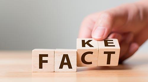 Noticias falsas en internet: la estrategia para combatir la desinformación