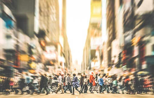 Programa Ejecutivo: Diseño Antropológico Urbano