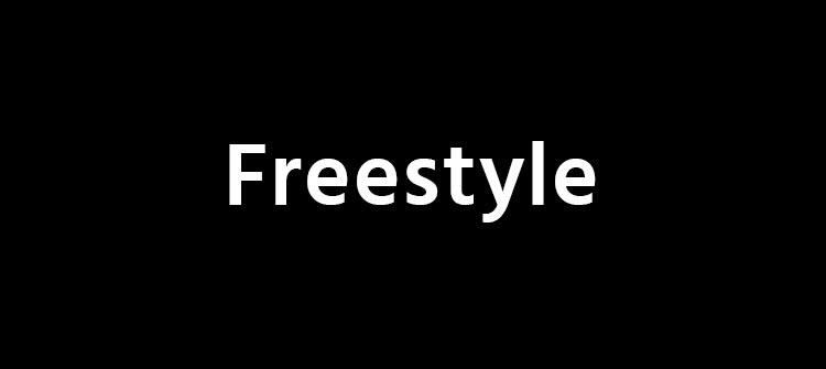 Programa Ejecutivo Freestyle