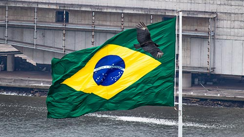 Brasil o la gripecita ideológica