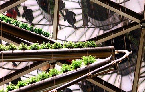 Ciclo: Arquitectura, sustentabilidad e innovaciones tecnológicas