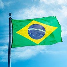El rol de la justicia federal brasilera en las investigaciones por corrupción y delitos económicos