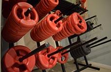 Músculos fundamentales