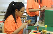 Voluntarios en acción