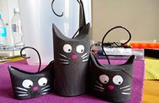 Gatitos con rollos de cartón